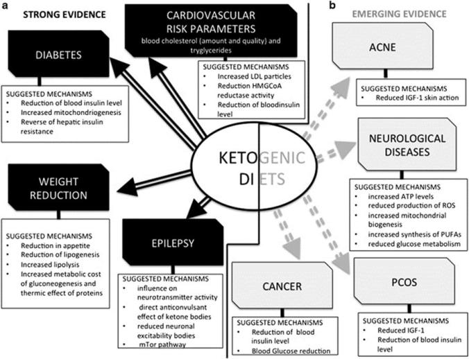 Possible physiological and biochemical mechanisms for the therapeutic action of a ketogenic diet in diseases and conditions for which there is strong scientific evidence (a) and emerging evidence (b).