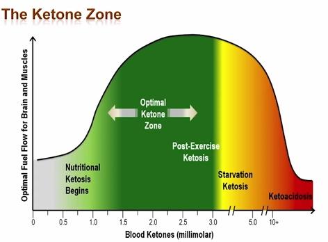 zone de cétose optimale